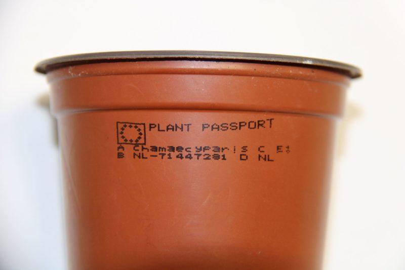 Plantenpaspoort 1